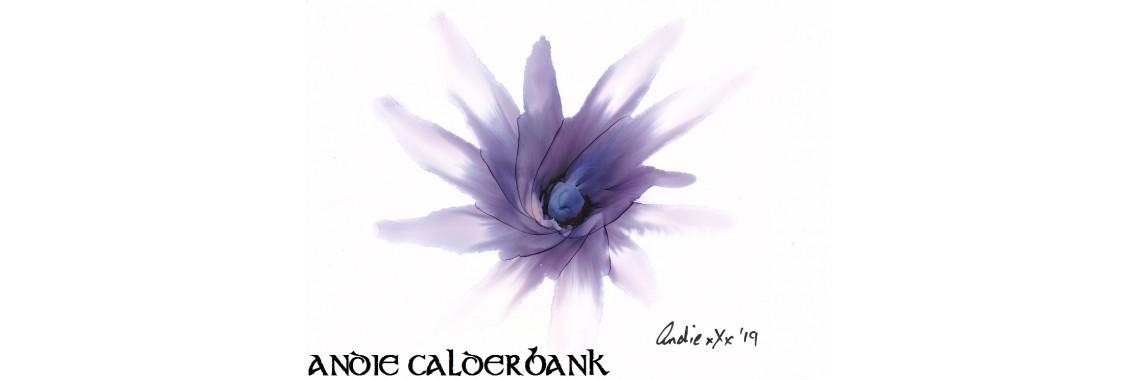 Andie Calderbank - Flower
