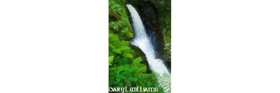 Daryl Williams - Poulanass Waterfall